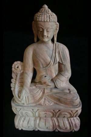 Medicine Buddha WBUDDHA25